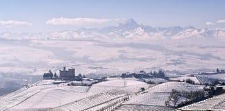 Vista del castello di Grinzane Cavour nell'inverno con neve fotografie stock libere da diritti