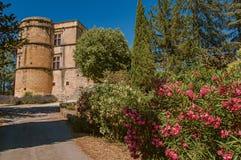 Vista del castello di Lourmarin con il cespuglio del fiore nella priorità alta, vicino a Lourmarin Immagine Stock