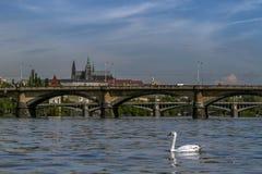 Vista del castello di Praga e dei ponti sul fiume della Moldava in una mattina soleggiata Praga, repubblica Ceca Fotografia Stock Libera da Diritti