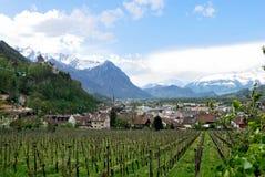 Vista del castello di Vaduz Fotografia Stock Libera da Diritti