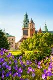 Vista del castello e della cattedrale di Wawel con il giardino, Cracovia, Polonia Immagine Stock