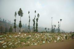 Vista del cementerio al lado de árboles Imagen de archivo libre de regalías