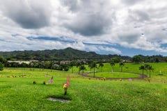 Vista del cementerio hawaiano en el valle de templos fotos de archivo
