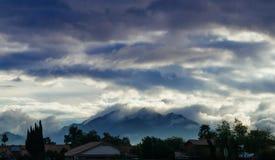 Vista del cielo blu di scena della montagna del paesaggio di mattina sulla collina con la priorità alta dell'albero immagine stock