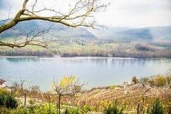Vista del Danubio con el viñedo, Durnstein Imagen de archivo