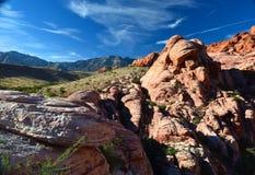 Vista del deserto del Mojave, Nevada, U.S.A., America settentrionale Immagini Stock Libere da Diritti