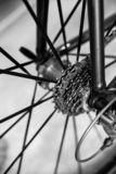 Vista del dettaglio dei rapporti di corsa degli ingranaggi della cassetta della bicicletta immagini stock
