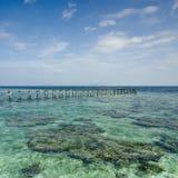 Vista del embarcadero roto viejo durante día soleado con s coralino y verde fotos de archivo