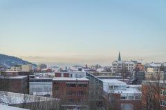 Vista del fiordo di Oslo nell'inverno Fotografie Stock Libere da Diritti