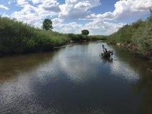 Vista del fiume Fotografia Stock