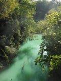 Vista del fiume, Bohol filippine Fotografia Stock