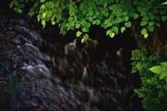 Vista del fiume da sopra fotografia stock