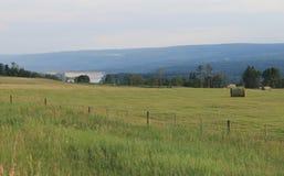 Vista del fiume dall'azienda agricola Fotografie Stock