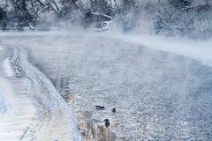 Vista del fiume di credito su una mattina gelida di inverno immagini stock libere da diritti