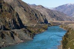 Vista del fiume di Katun in montagne di Altai Fotografie Stock