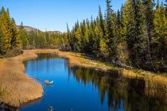 Vista del fiume di Katun nelle montagne di Altai Immagini Stock Libere da Diritti