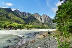 Vista del fiume di Katun Repubblica di Altai, Russia Fotografia Stock Libera da Diritti