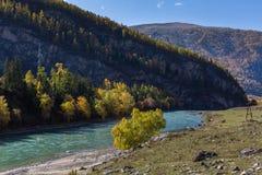 Vista del fiume di Katun, Repubblica di Altai, Russia nave Fotografia Stock Libera da Diritti