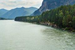 Vista del fiume di Katun del turchese Repubblica di Altai, Russia Fotografie Stock