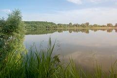 Vista del fiume di mattina dall'erba Fotografia Stock