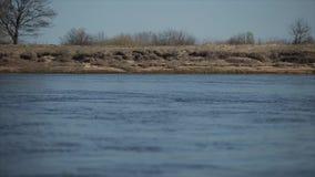 Vista del fiume nel moto dal punto di vista della barca stock footage