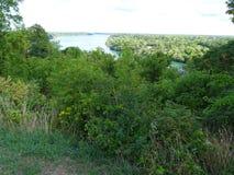 Vista del fiume Niagara circondato da vegetazione Fotografia Stock Libera da Diritti
