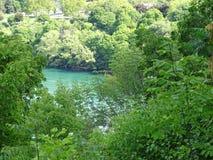 Vista del fiume Niagara circondato da vegetazione Immagini Stock