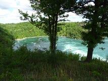 Vista del fiume Niagara circondato da vegetazione Fotografia Stock