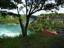 Vista del fiume Niagara circondato da vegetazione Immagine Stock Libera da Diritti