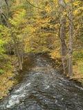 Vista del flusso di autunno fotografia stock libera da diritti