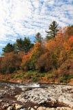 Vista del fogliame del Vermont Fotografia Stock