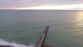 Vista del fuco del litorale con le talpe, Soci, Russia archivi video