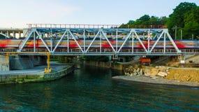 Vista del fuco del ponte ferroviario Fotografie Stock Libere da Diritti