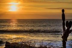 Vista del Galapagos Immagini Stock Libere da Diritti