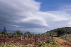 Vista del Galilee Immagine Stock Libera da Diritti
