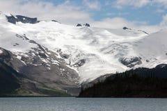 Vista del ghiacciaio Immagini Stock