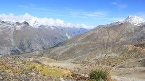 Vista del ghiacciaio e della montagna con i fiori selvaggi fotografie stock libere da diritti