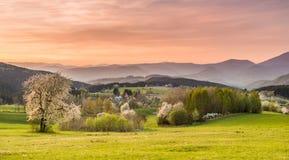 vista del giacimento e del prato della montagna Fotografia Stock
