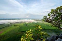 Vista del giacimento del riso dalla cima di Khao né a Nakhon Sawan, Tailandia immagine stock