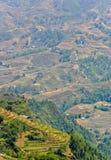 Vista del giacimento a terrazze del riso in Sapa fotografie stock libere da diritti