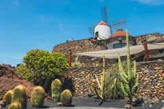 Vista del giardino del cactus con il mulino a vento bianco in Guatiza Fotografia Stock Libera da Diritti