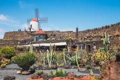 Vista del giardino del cactus con il mulino a vento bianco in Guatiza, attrazione popolare a Lanzarote, isole Canarie Fotografia Stock