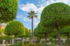 Vista del giardino, Cordova fotografia stock