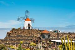 Vista del giardino del cactus con il mulino a vento bianco in Guatiza, attrazione popolare a Lanzarote Immagine Stock