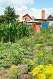 Vista del giardino del villaggio sul cortile Immagini Stock Libere da Diritti