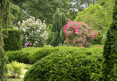 Vista del giardino e della sosta Fotografie Stock