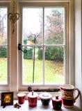 Vista del giardino e della struttura della finestra Fotografia Stock Libera da Diritti