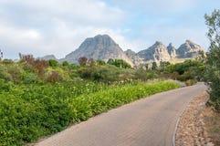 Vista del giardino vicino a Stellenbosch Fotografia Stock Libera da Diritti