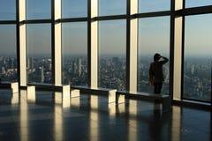 Vista del grattacielo Immagini Stock Libere da Diritti