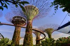 Vista del jardín por la bahía Singapur Fotos de archivo